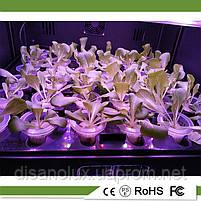 Интелектуальное фитооборудование  для выращивания растений в домашних условиях , фото 5