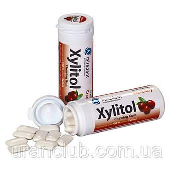 Жевательная резинка XYLITOL CHEWING GUM Упаковка 30 шт -клюква
