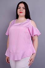 Блузка Меринда розовый