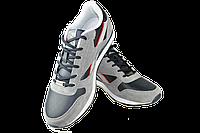 Мужские кроссовки reebok (рибок) classic спорт 7 d3018-6 серые   весенние , фото 1