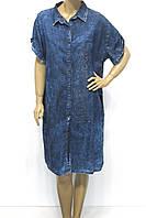 Плаття Великих — Купить Недорого у Проверенных Продавцов на Bigl.ua ed02fbf2d6389