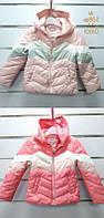Куртки  для девочек Setty Koop 1-5 лет