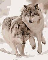 Картина по номерам Снежные волки 40 х 50 см (AS0062)