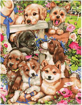 Картина по номерам Милые щенки 40 х 50 см (BK-GX21567)