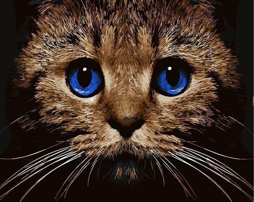 Картина по номерам Кошачий взгляд 40 х 50 см (BK-GX21674)