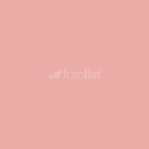 Фон бумажный BD 1,35 х 11,0 м Розовый (Pastel Pink) (11752 BD)