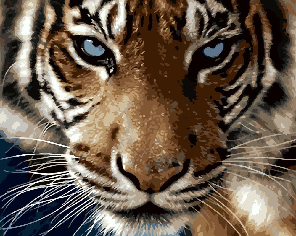 Картина по номерам Взгляд тигра 40 х 50 см (BRM8767)