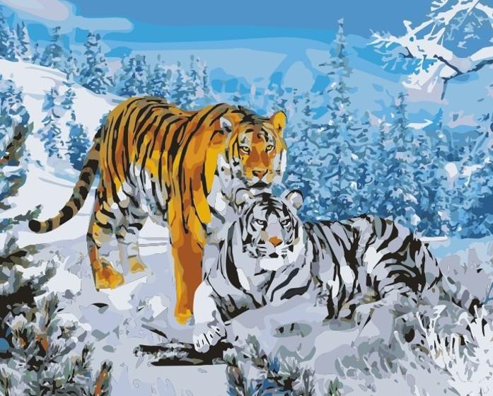 Картина по номерам Два тигра 40 х 50 см (KH194)