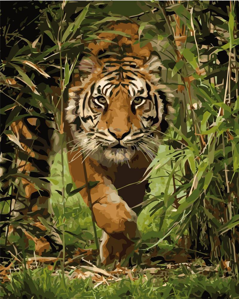 Картина по номерам Тигр на охоте 40 х 50 см (KHO4043)