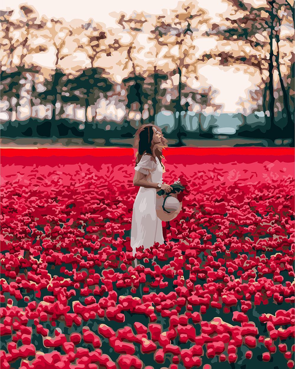 Картина за номерами Червоне поле 40 х 50 см (BRM24932)