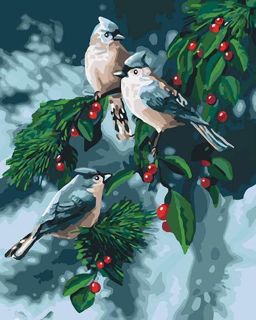 Картина по номерам Зимние птички 40 х 50 см (KH4081)