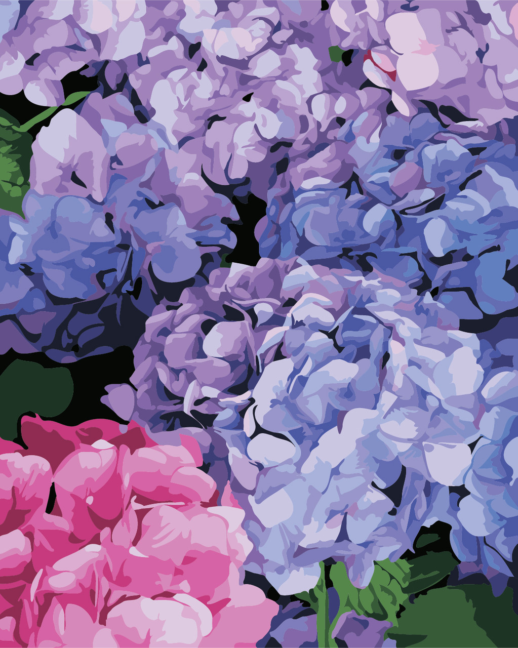 Картина по номерам Цветущая гортензия 40 х 50 см (AS0334)