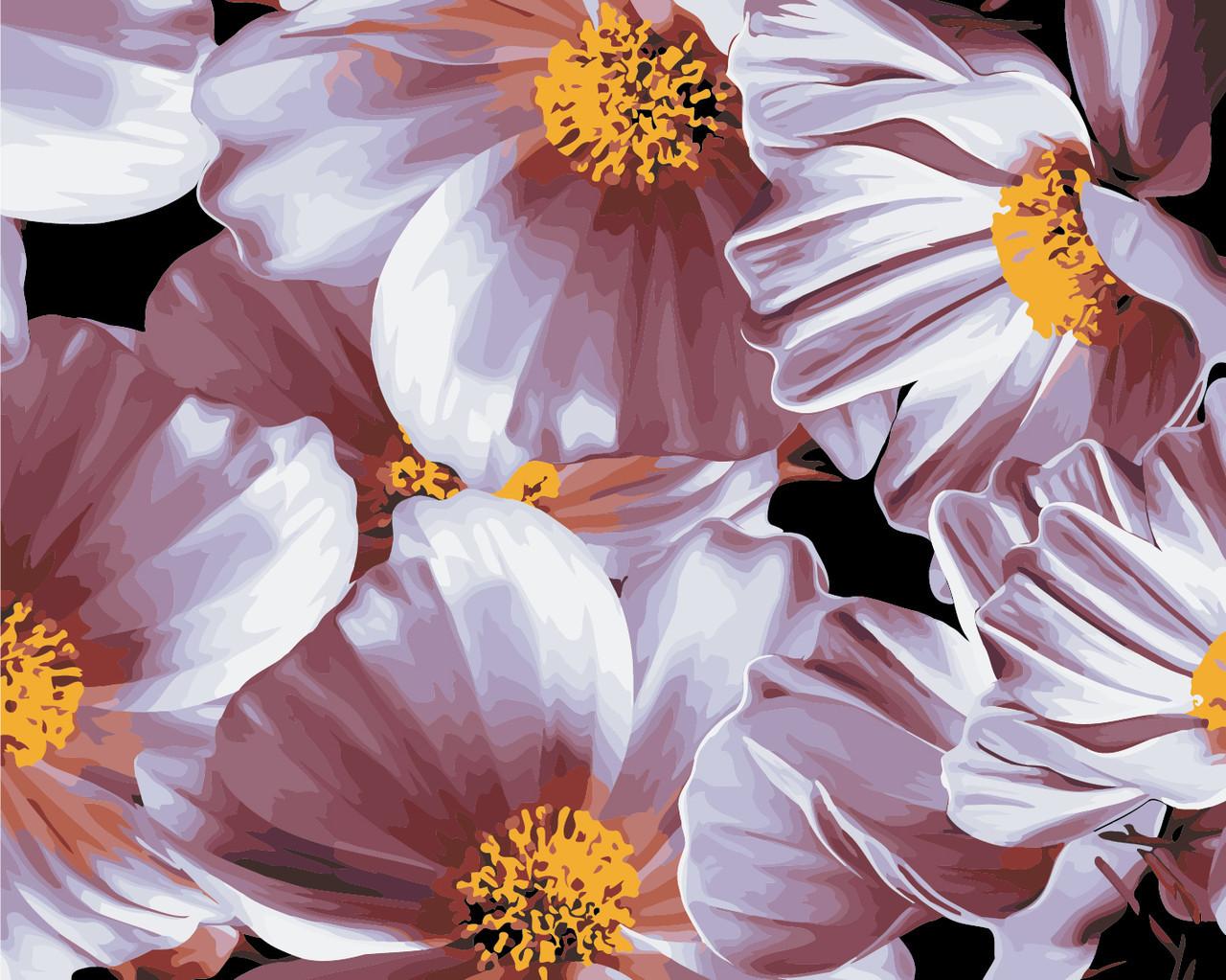 Картина по номерам Нежные маргаритки 40 х 50 см (AS0355)