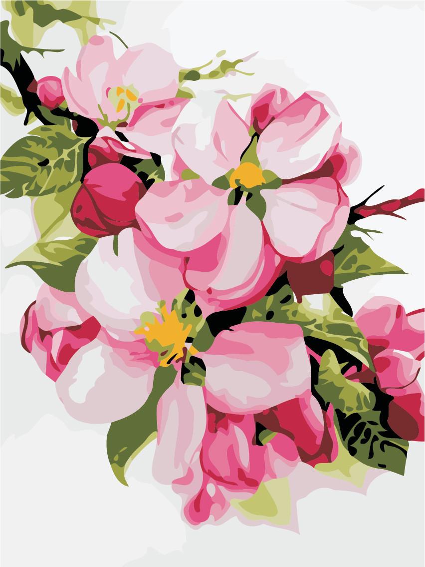 Картина по номерам Яблоневый цвет 30 х 40 см (AS0482)