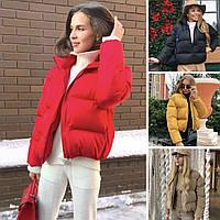 Женская короткая весеняя куртка без капюшона, чёрный, красный, какао, белый, горчица, белый 42,44,46