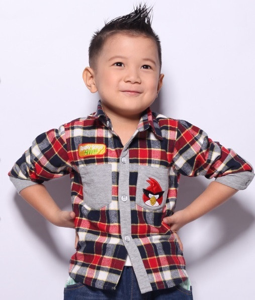 Рубашка Angry Birds для мальчика.