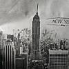 Эко-сумка из спанбонд большая на молнии (размер: 50*42*15 см) Нью-Йорк