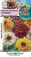 Хризантема крупноцветная Хоровод, смесь, фото 1