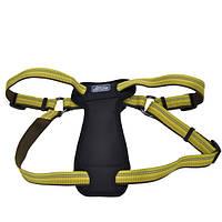 Шлея Coastal K9 Explorer для собак с нагрудником, 65-95 см Желтый