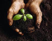 Удобрение для улучшения плодородия почвы