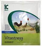 Витастресс
