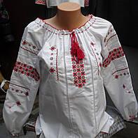 Вышиванка блуза Роза 781 (С.Е.Р.) батал