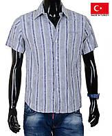 Оригинальные модели мужских сорочек высокого качества. Распродажа и новинки