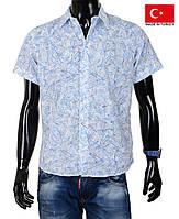 Молодежные рубашки с коротким рукавом.
