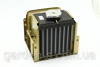 Радиатор Алюминий  (Мототракторный тип) ANDL 1-GZ / ANE R195, фото 2