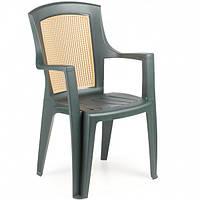 Кресло пластиковое Viola wood зеленое