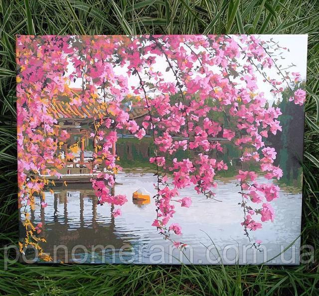 Картина по номерам Сакура и фото готовой раскраски