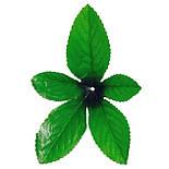 Лист зірка підкладка , 15см (700 шт в уп), фото 2