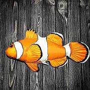 Рыба клоун 56*25см- мягкие игрушки