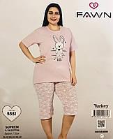 Женская пижама хлопок FAWN Турция размер 3XL(54) 5551