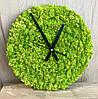 Часы из стабилизированного мха, живые часы