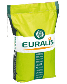 Семена подсолнечника ЕС Янис
