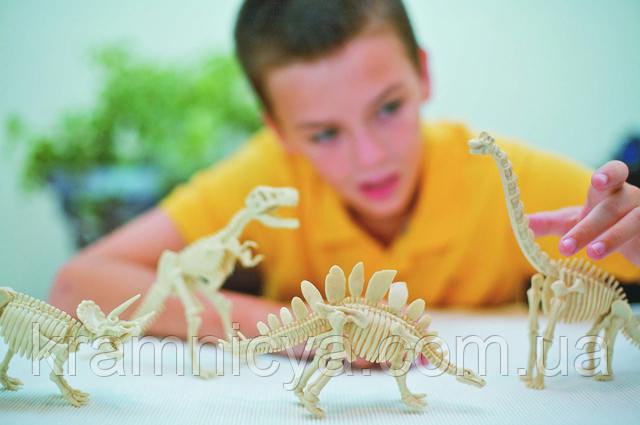 Раскопки динозавра купить