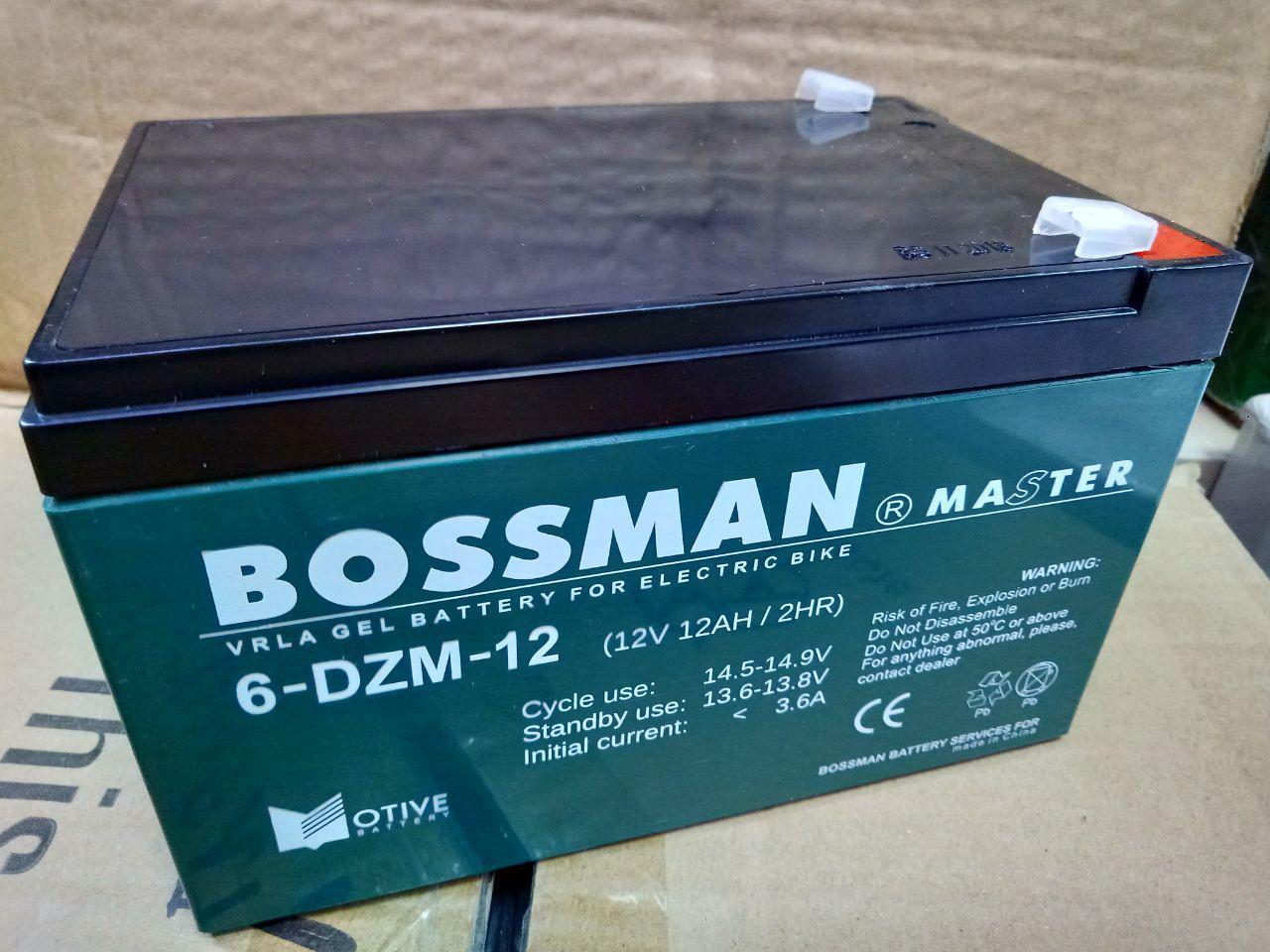 Тяговый аккумулятор Bossman Master 6DZM12 - GEL 12V 12Ah