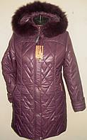 Зимние женские куртки недорого
