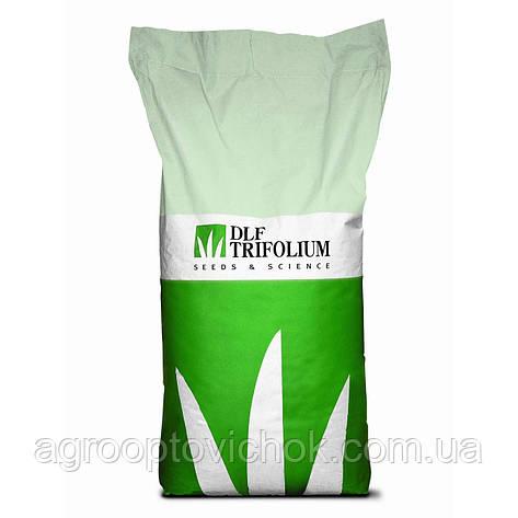 Семена газонной травы ТіньоваUNIVERSAL PARK 20 КГ, фото 2