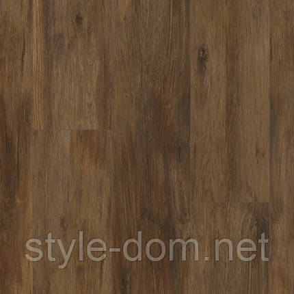 Ламінат Kaindl Classic Touch 8 mm Standard Plank Дуб NORDIC SHORE, фото 2