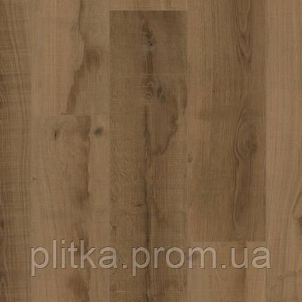 Ламінат Kaindl Classic Touch 8 mm Standard Plank Дуб NATIVE AGED, фото 2