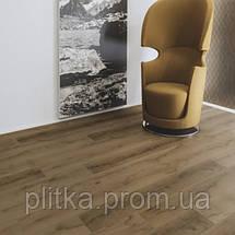 Ламінат Kaindl Classic Touch 8 mm Standard Plank Дуб NATIVE AGED, фото 3