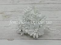 Сложные тычинки на проволоке, Белые, фото 1