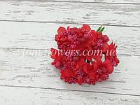 Сложные тычинки на проволоке, Красные, фото 1