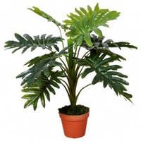 791-13 Филодендрон Селло, 13 ветвей, коричневый горшок