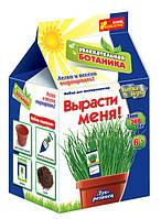 Увлекательная ботаника: Лук-резанец 0364 Ранок Украина