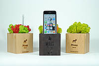 Moss Cube 2.0. Подставка со стабилизированным мхом для телефона, фото 1