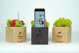 Moss Cube 2.0. Подставка со стабилизированным мхом для телефона