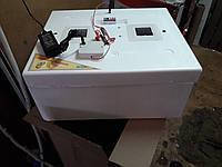 Инкубатор Курочка Ряба автомат на 62 яйца+12V с 2я сетками и вентилятором